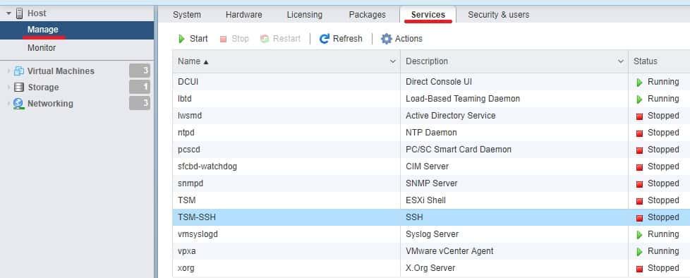 Vmware SSH service ESXi web