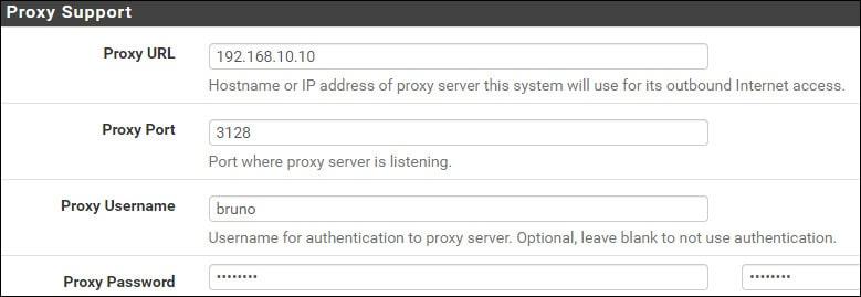 pfsense outbound proxy