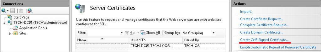 IIS Self-signed certificate