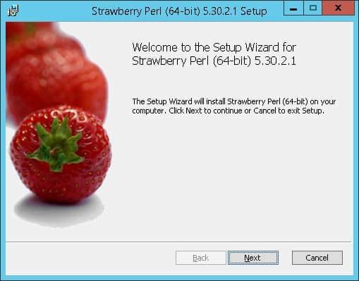 Strawberry perl installation Windows