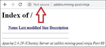 Zabbix HTTP Virtual Host