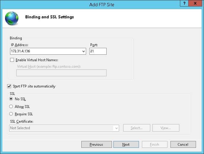 Windows - FTP Server Binding settings