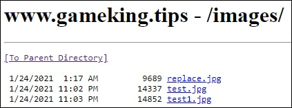 IIS - Allow directory listing
